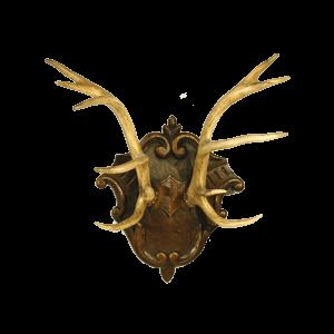 Trophée de cerf sur plaque sculptée de Brienz