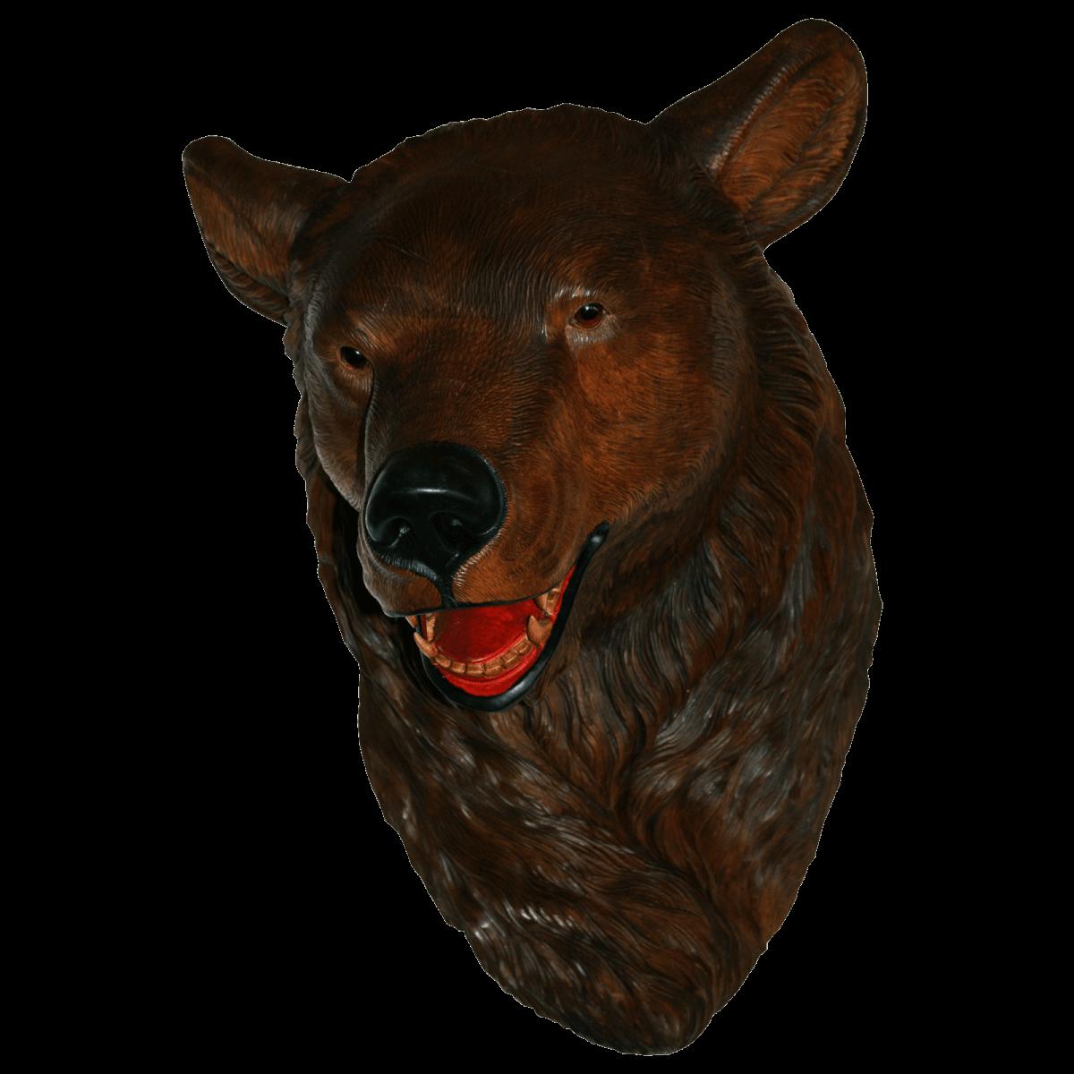 Tête ours de Brienz